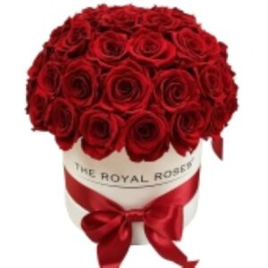 Box with 41 red roses